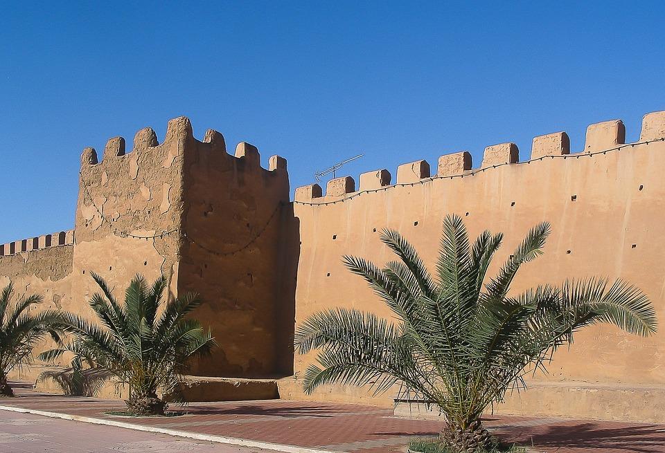Maroc, Taroudant, Remparts, Muraille, Palmiers