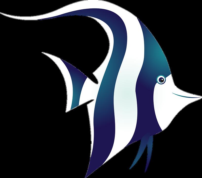 Unduh 510 Koleksi Gambar Logo Ikan Laut HD Terbaik