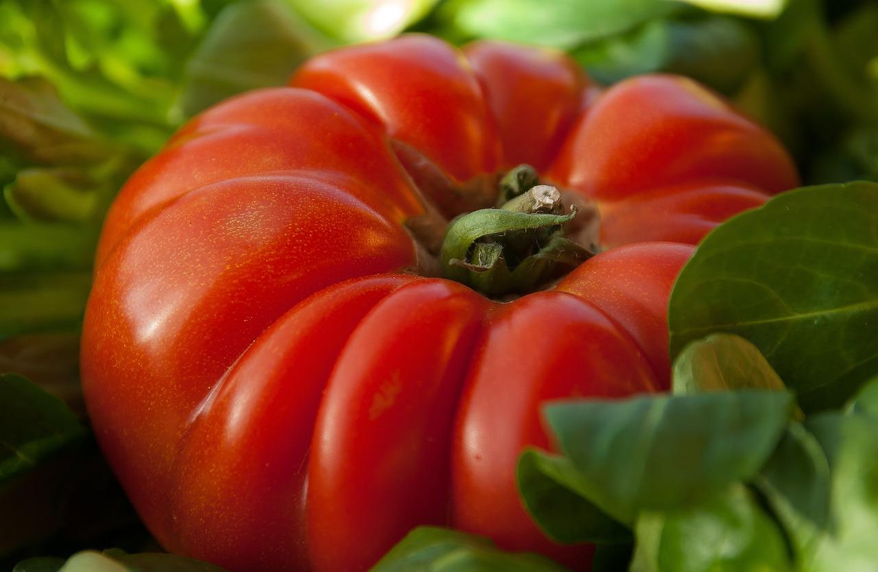 Tomato Vegetable Beef Heart - Free photo on Pixabay