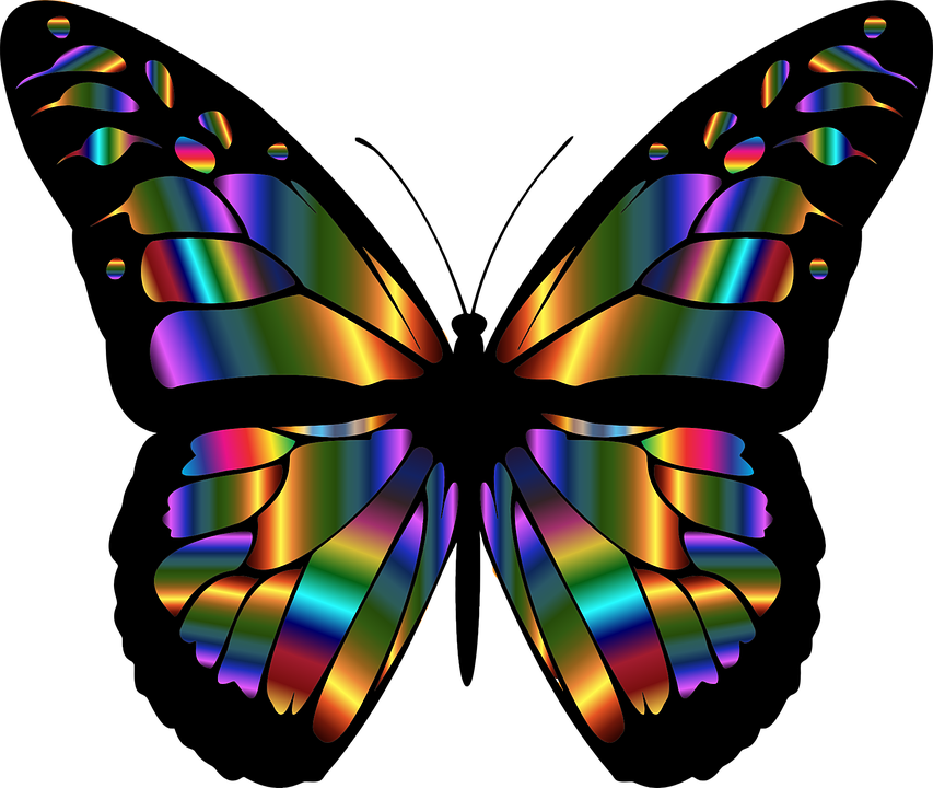 It is an image of Remarkable Free Printable Butterflies