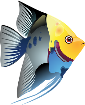 Fish tank free pictures on pixabay for Jims exotic fish