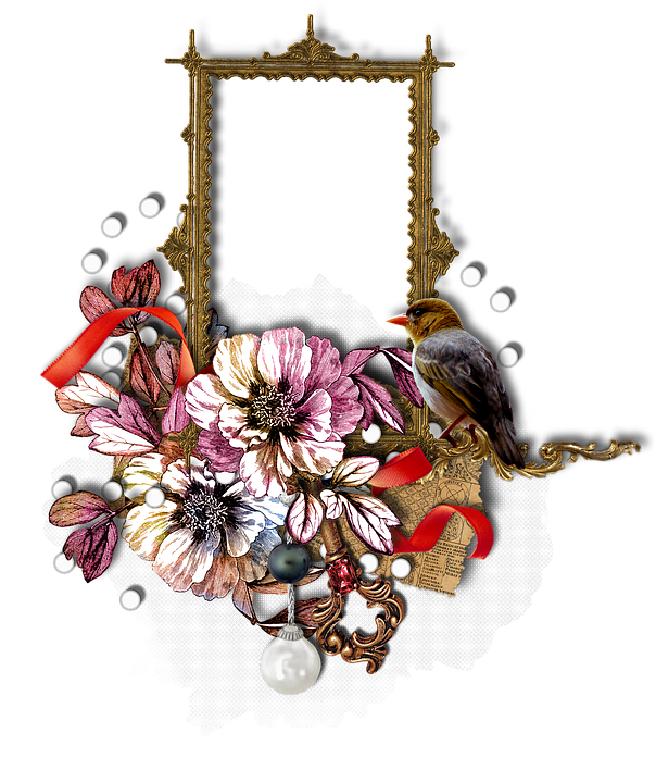 Free Illustration Scrapbook Frame Cluster Flower