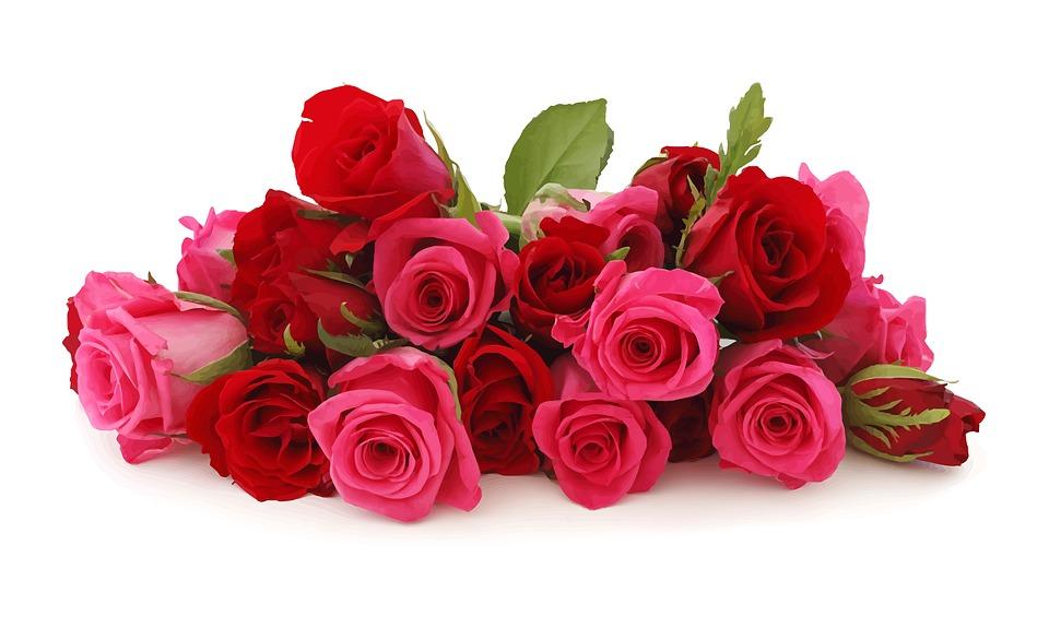 Fleurs Roses Romance Rose Image Gratuite Sur Pixabay