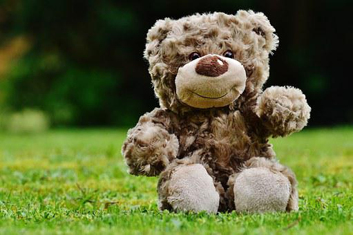 Teddy bear images pixabay download free pictures teddy soft toy stuffed animal teddy bear c altavistaventures Choice Image