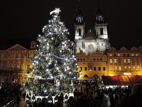 Praga, Navidad, Árbol, Árbol De Navidad