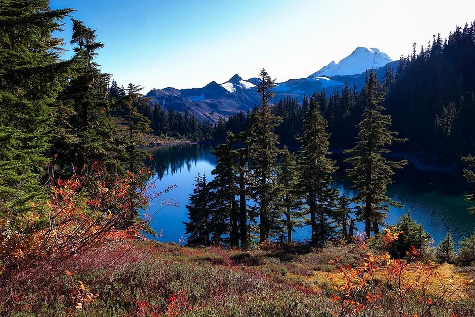 Washington Landscape 37174 Bursary