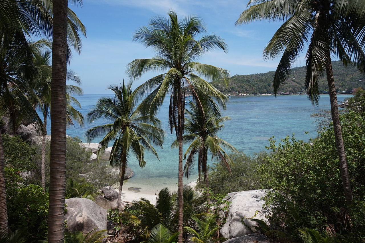 фото тропиков островов такой автомобиль