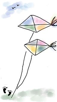 Kite, Fly A Kite, Sunny, Footprint