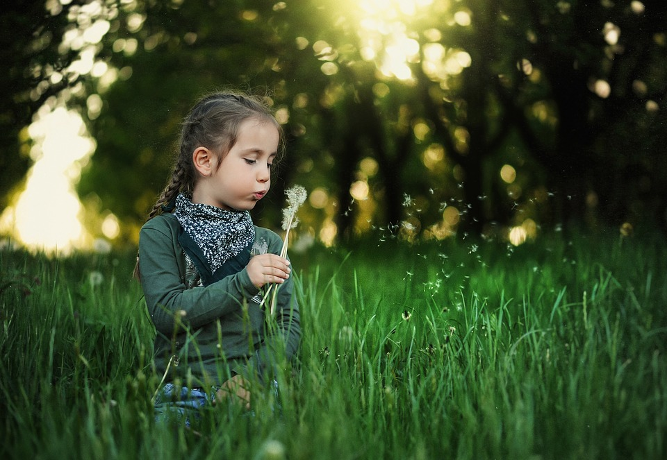 Niño, Diente De León, Kids, Primavera, Naturaleza