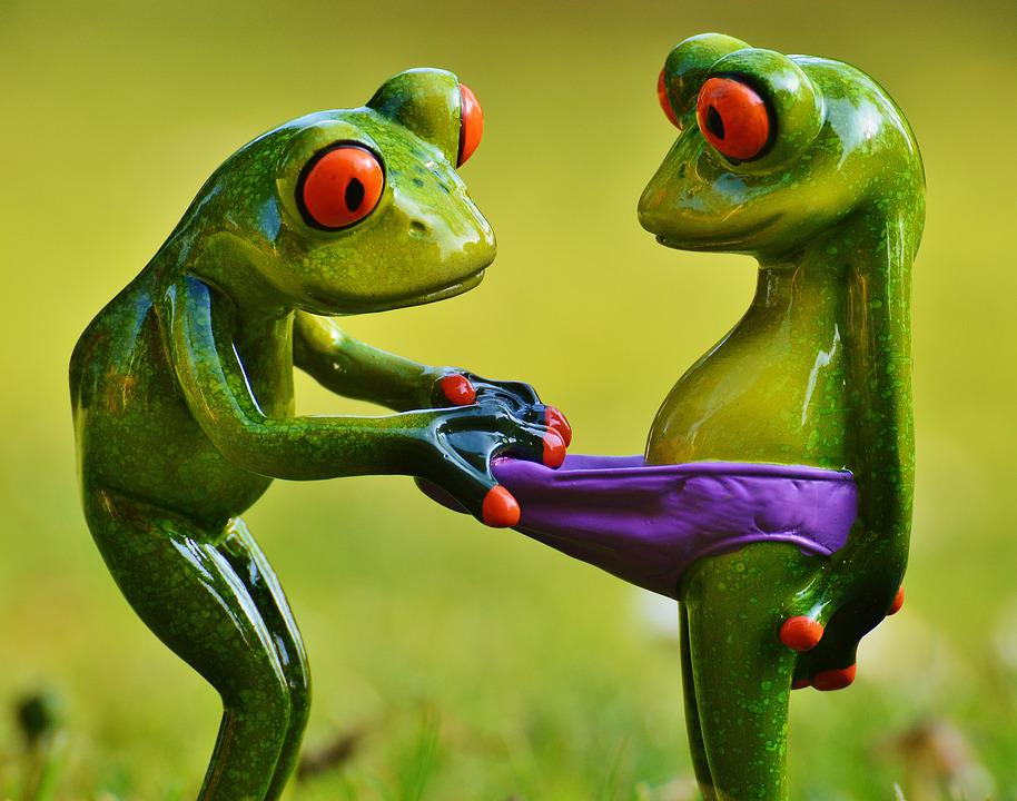 Nice Black And Red Kitchen #6: Frogs-1347637_960_720.jpg