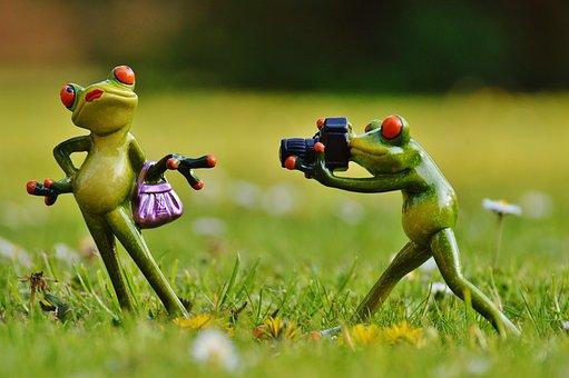 Frog, Photographer, Model, Photo Model