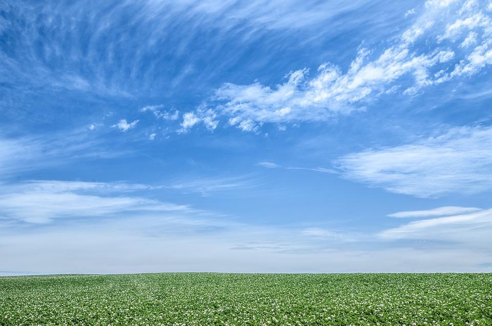 青空 空 緑 Pixabayの無料写真