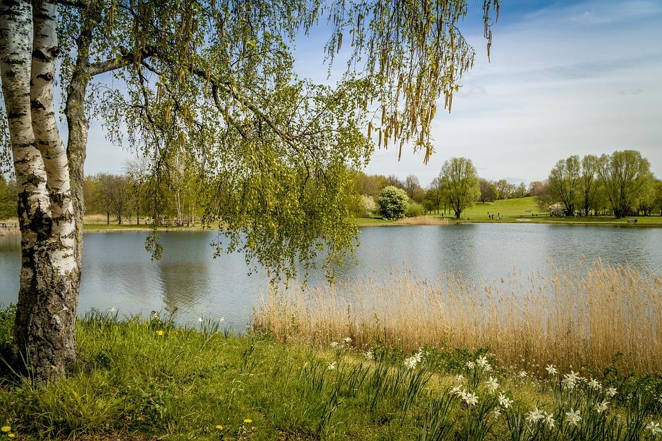 Kostenloses Foto: Britzer Garten, Berlin, Natur - Kostenloses Bild auf Pixabay - 1350305