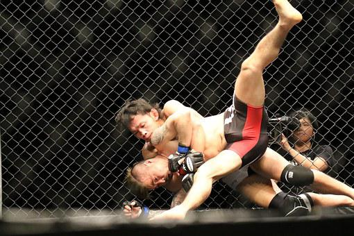 Mma, Mixed Martial Arts, Maza Fight