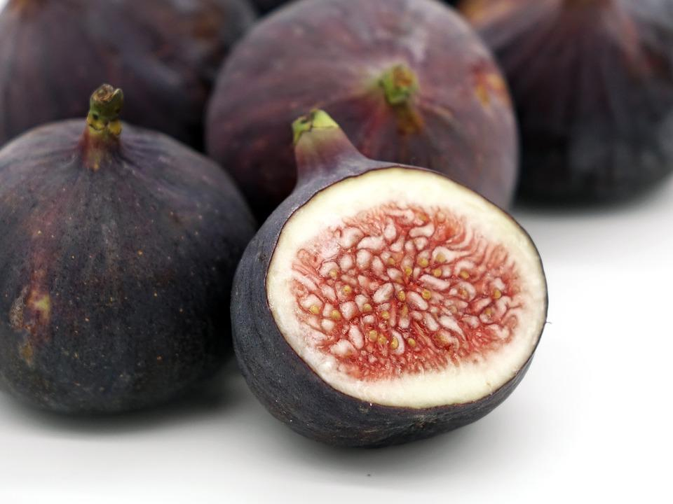 free photo fig, ficus carica, fruit, fresh  free image on, Beautiful flower