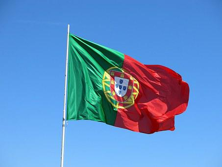 Image result for IMAGES PORTUGAL FLAG