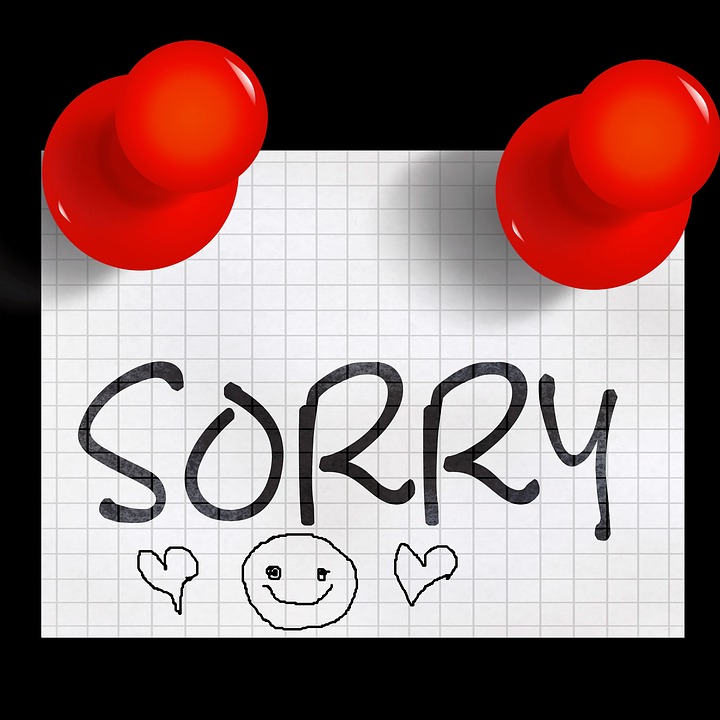 Sorry Excuse Me I Beg Your Pardon 183 Free Image On Pixabay