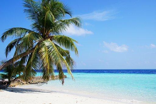 モルディブ, 海, 青, パーム, 空, ビーチ, 旅行, 熱帯, 水, 島