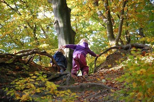 Menschen, Balance, Wald, Herbst, Natur