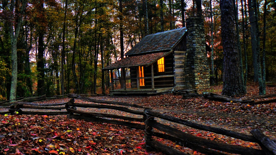 Cabin, Woods, Fall, Historic, Nature, Forest, Landscape
