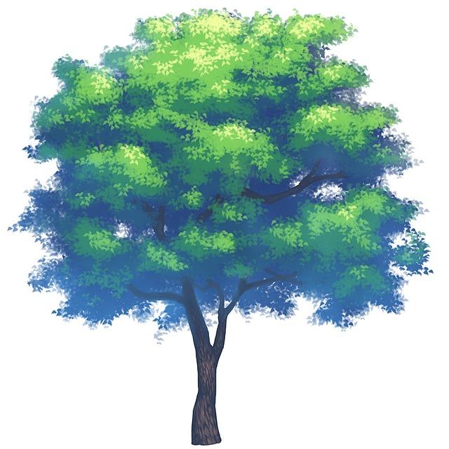 Plantes arbre la plantation image gratuite sur pixabay - Plantation d arbres synonyme ...