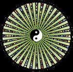 wheel, spoke, rays
