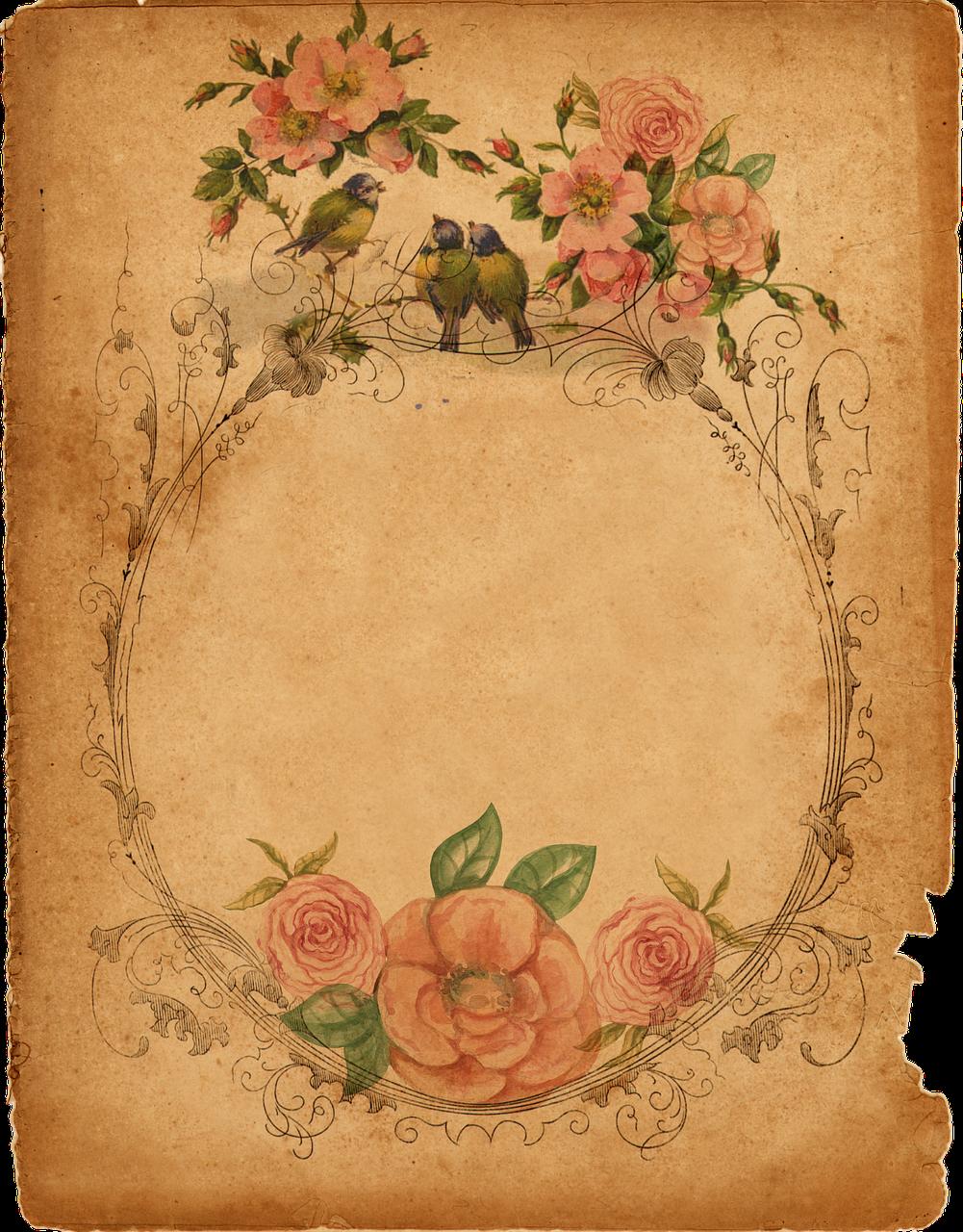 Роза, фоны в виде открыток