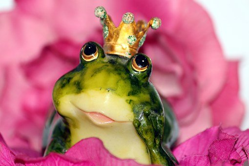 Allt om dating -Frog Prince Crown Flower Dreamy Frog Love