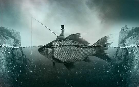 Fish, Lake, Fishing, Fisherman