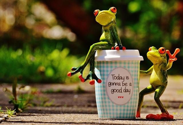 Beautiful Day Joy Frog 183 Free Photo On Pixabay