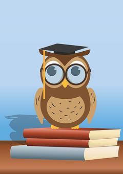 Leseeule, Buch, Eule, Brille, Lesen