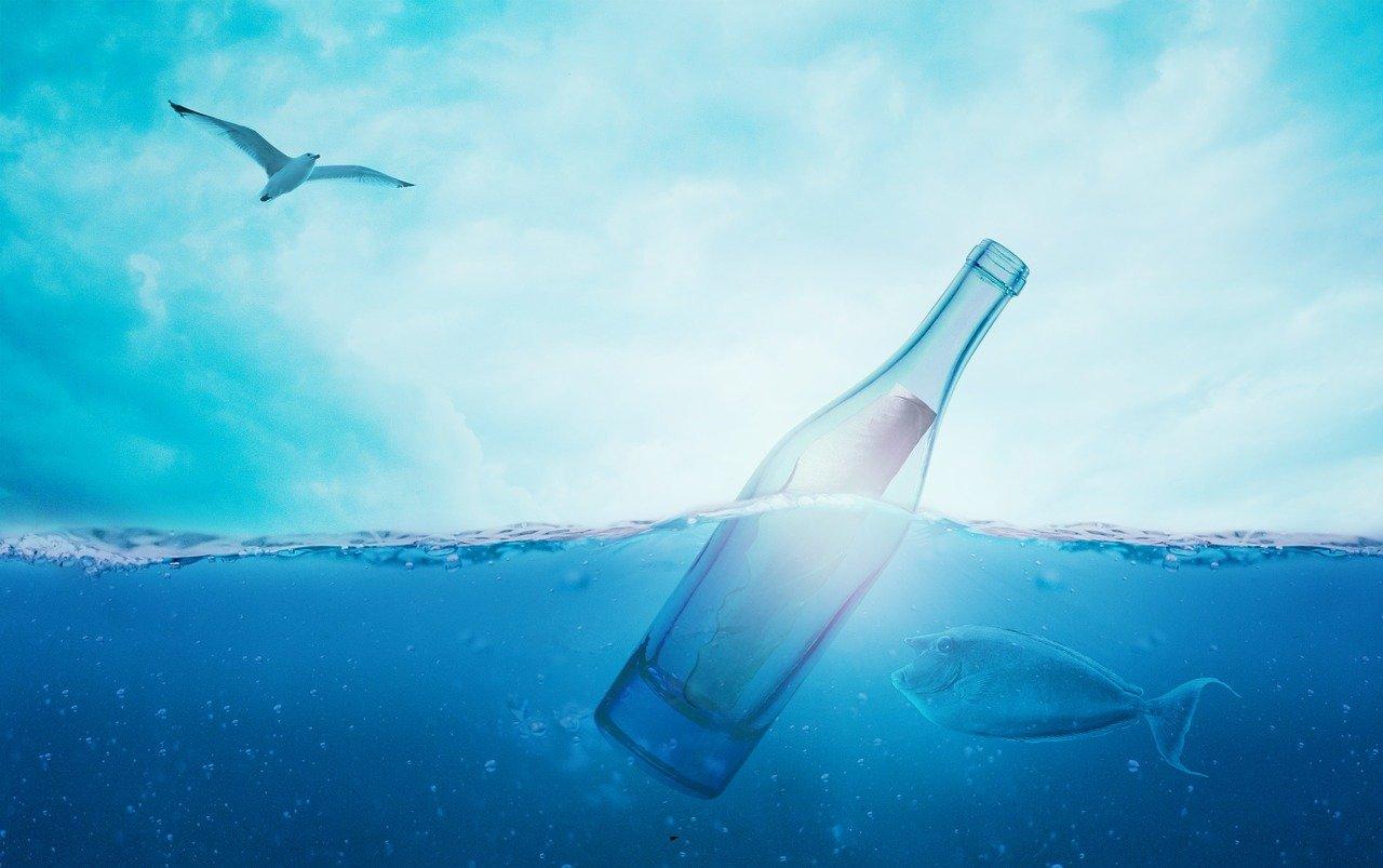 16.9 oz bottles make a gallon