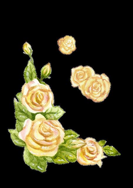free illustration  english rose  yellow  watercolor - free image on pixabay