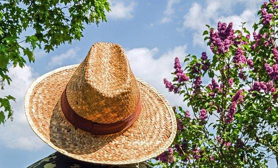 帽子, 麦わら帽子, 日焼け止め, 三つ編み, わら, ミスター ハット