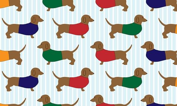 Dachshund Dog Cartoon Art Wallpaper