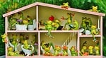 frogs, funny, home