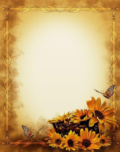 rahmen schmetterlinge sonnenblumen  u00b7 kostenloses bild auf