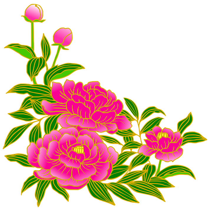 peony pink gay free image on pixabay rh pixabay com peony clipart free pony clip art black and white