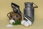 milk, egg, agitator