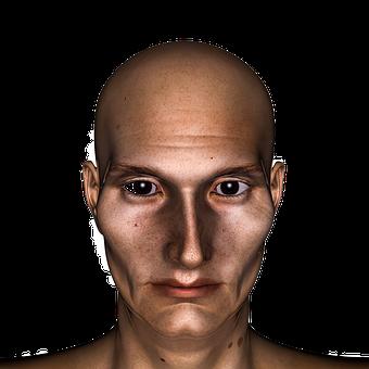 Head, Man, Bald Head, Portrait