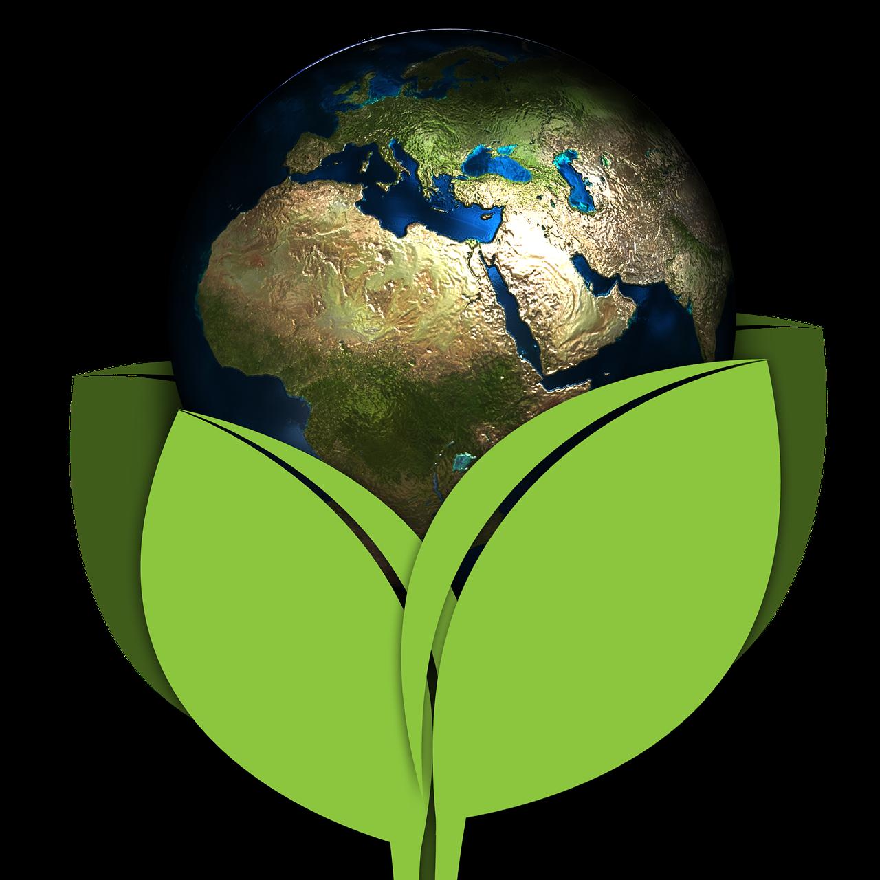 картинки глобус экология камчатке кижуч находиться