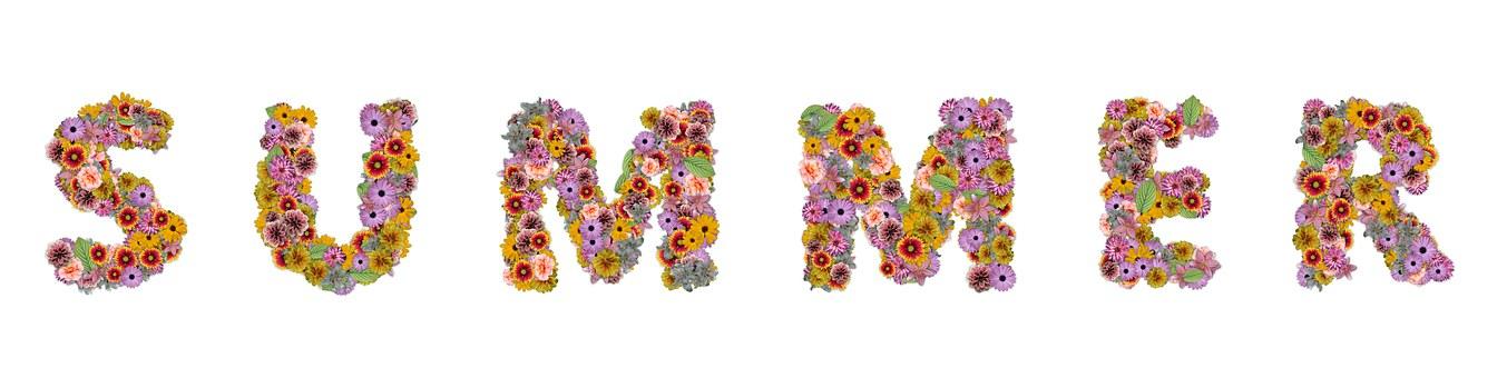 Flowers, Summer, Summer Flowers, Nature