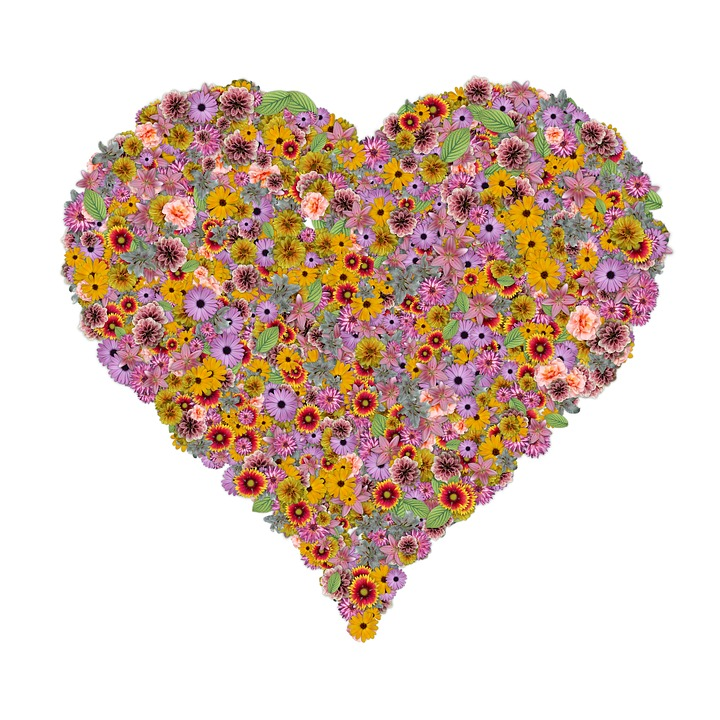 free illustration heart, flowers, love, shape  free image on, Beautiful flower
