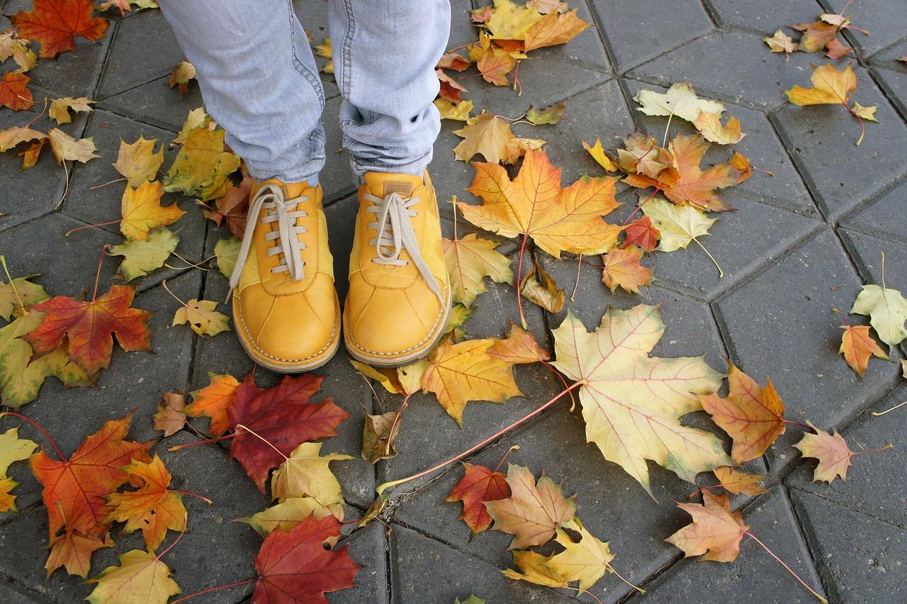 караев пяточки в осенней листве картинки световые