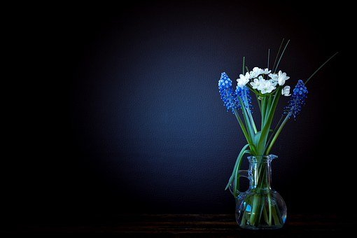 Flower Vase Images Pixabay Download Free Pictures
