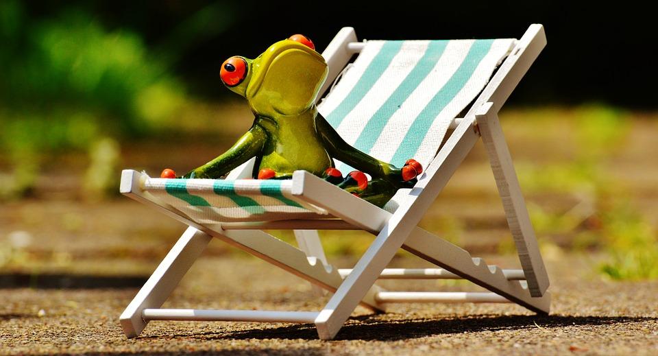 liegestuhl strand frosch kostenloses foto auf pixabay. Black Bedroom Furniture Sets. Home Design Ideas