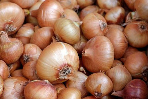 Onions, Vegetables, Food, Healthy