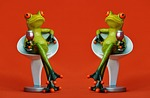 frogs, chair, together