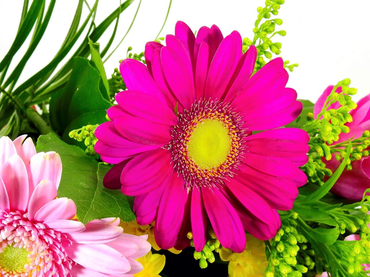 Говорящая открытка цветы