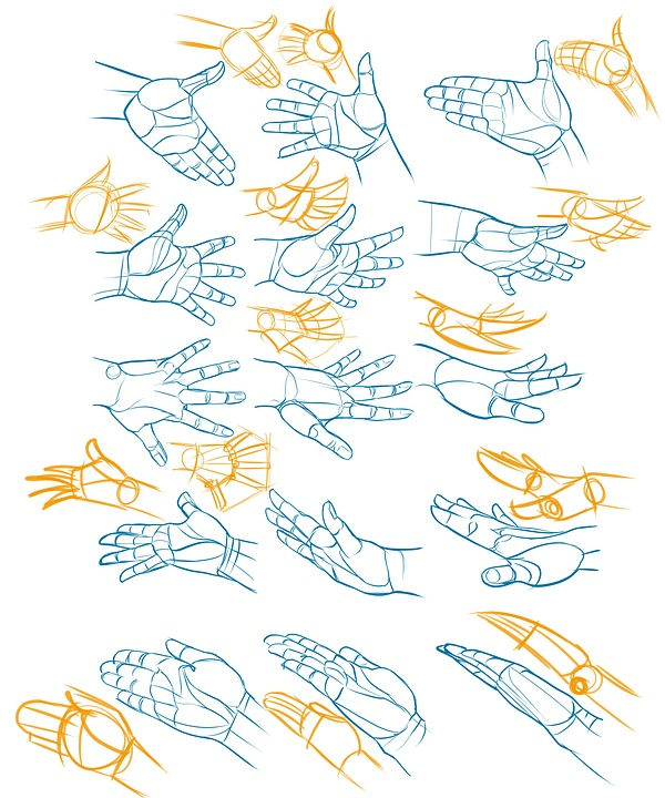 hands reference drawing free image on pixabay